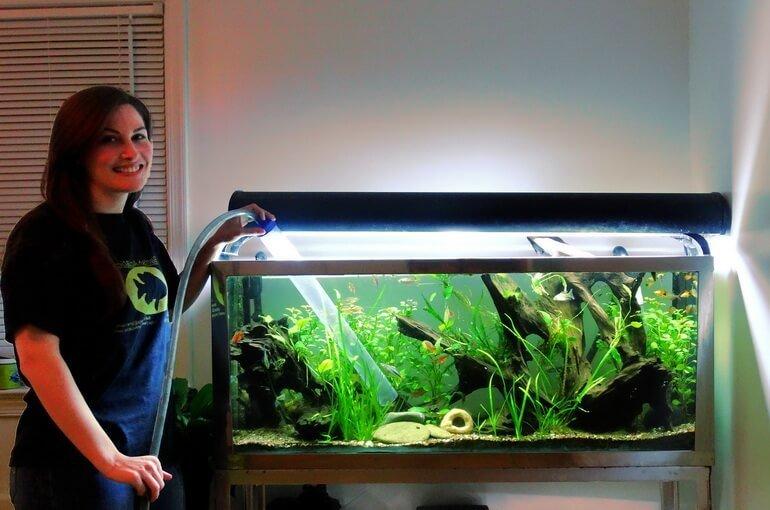 Чистка аквариумов и уход за рыбками