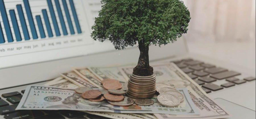 Инвестиционный портфель DAXIOMA: какие риски и доходность? Что пишут инвесторы в своих отзывах?