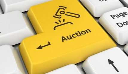 Успешный бизнес с помощью любых интернет-аукционов